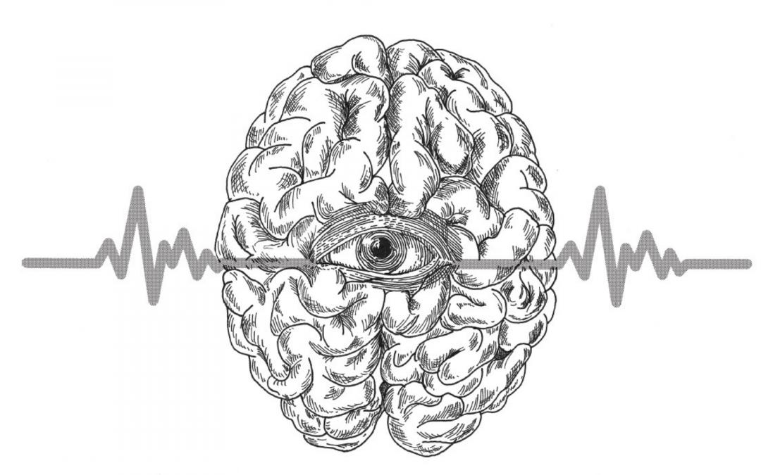 """Fête de la Science: Conférence en ligne """"Autisme et vision"""""""